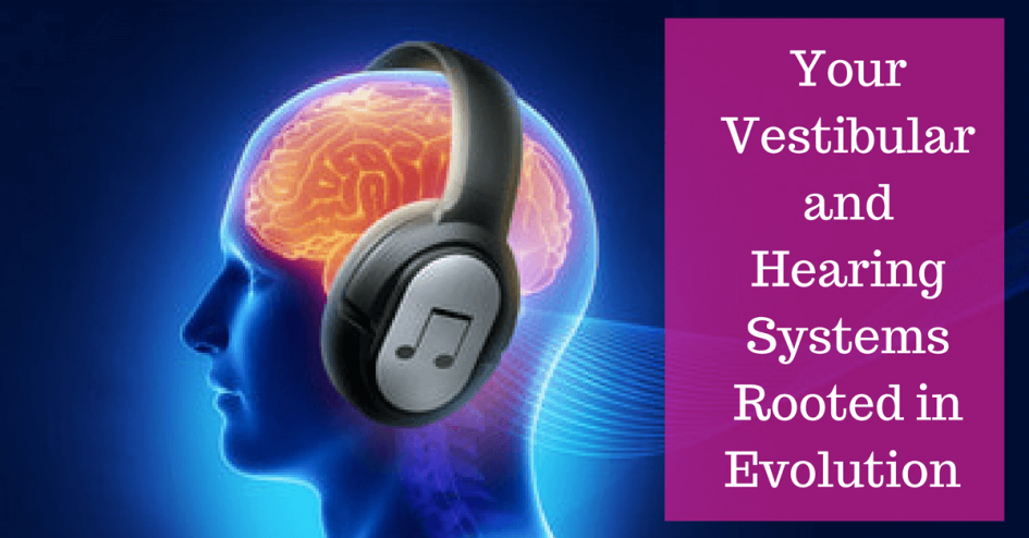 Your Vestibular and Hearing System are Rooted in Evolution